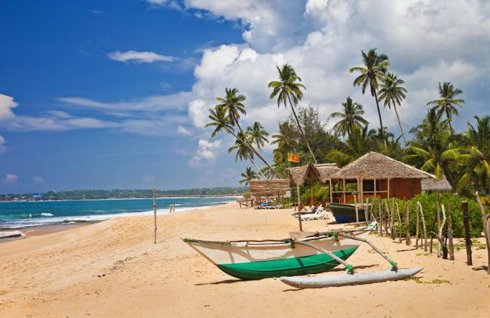 Everything you need to know about a Sri Lanka honeymoon