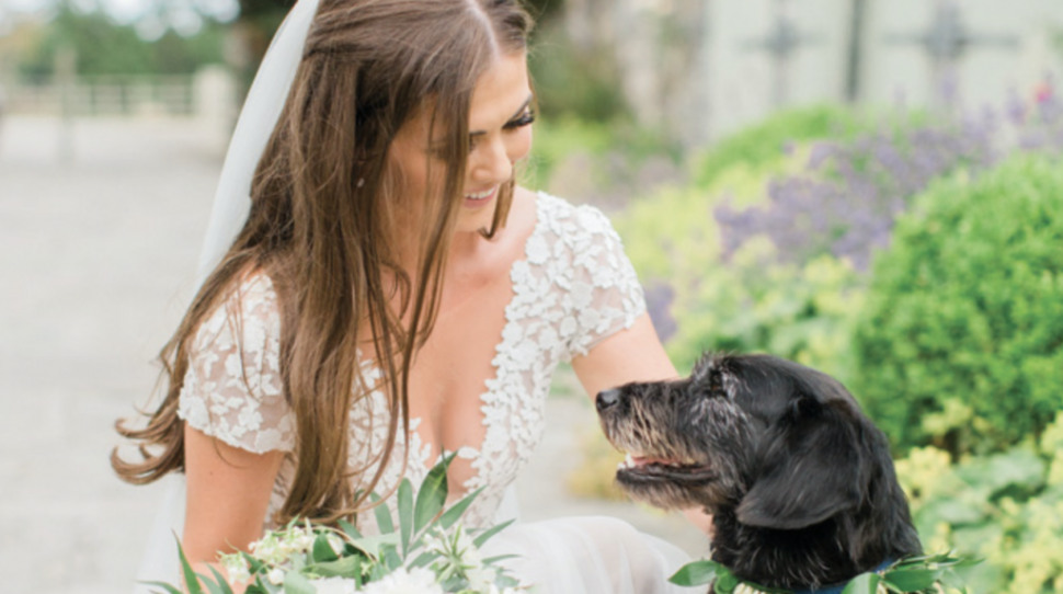 13 lovely ways to include your pet in your wedding