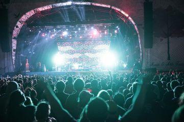 Electric Picnic 2014 - Sunday