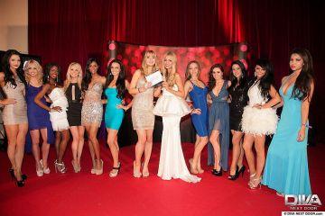 Diva Next Door - 2013 Final - Entrants