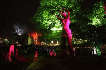 Electric Picnic 2012 Friday Night
