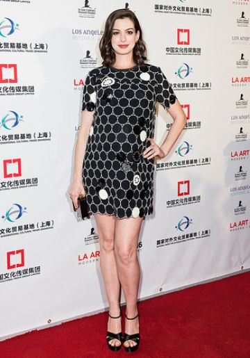 Anne Hathaway opens LA Art Show And Los Angeles Fine Art Show's 2016