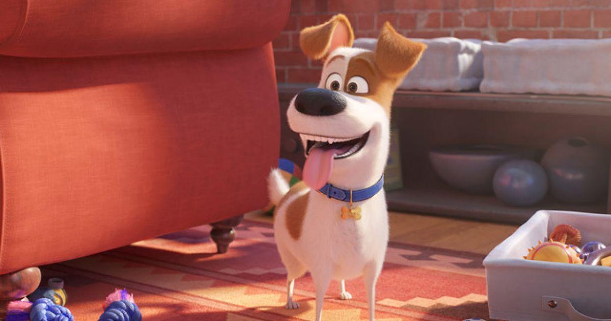 The Secret Life Of Pets 2 Cinema Movie Film Review Entertainment Ie