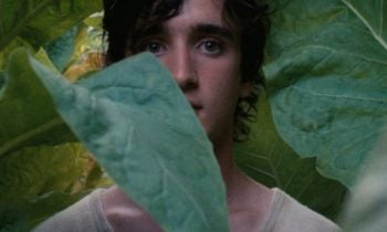 Happy-As-Lazzaro-Featured-Image