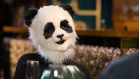 'Sexy Beasts' is utter panda-monium - but in a good way