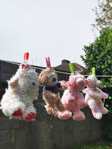 Taken in Crumlin. Quarantine Level: my Mam washed my dog's teddies (used to be my teddies!) She's eyeing me up now.. I think I'm next..By Eva H