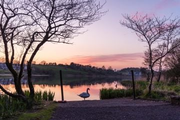 Taken in Bailieborough, Co. Cavan.   'At the beautiful town lake, in my hometown in Bailieborough county cavan. Lucky to have this right on our doorstep '  By Oliver G