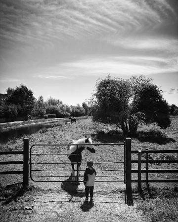 Taken in Naas, Kildare.  'Having the chats'.  By Fiona C.