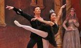 Ballet Ireland presents Tchaikovsky's Swan Lake