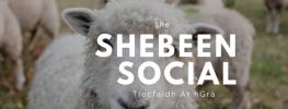 The Shebeen Social