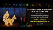 Wonderlights x Palmerstown House Estate