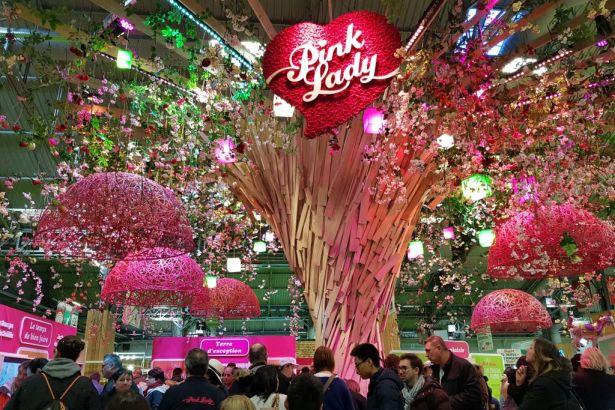 Бренд Pink Lady представил нетрадиционный подход к выращиванию яблок