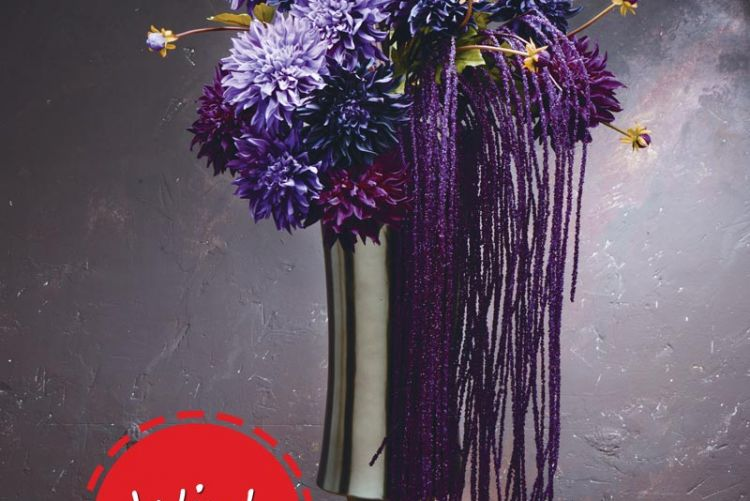Win 100 worth of sia silk flowers from la maison chic houseandhome win 100 worth of sia silk flowers from la maison chic mightylinksfo Image collections