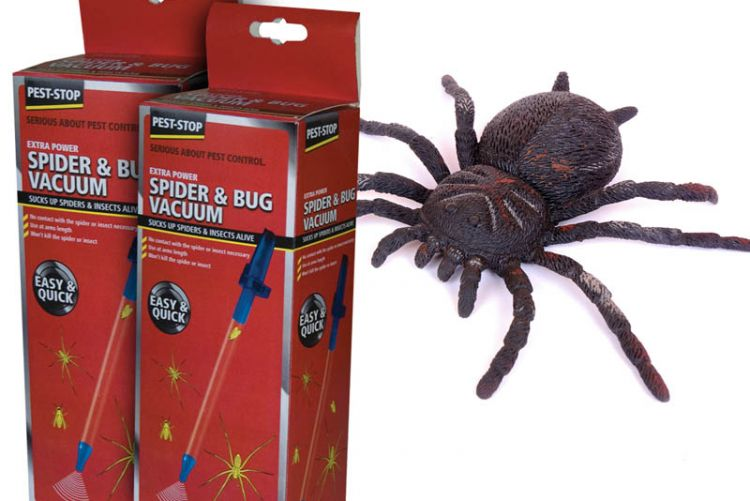 Suck it up: the Procter Pest-Stop Spider and Bug Vacuum is our autumn friend
