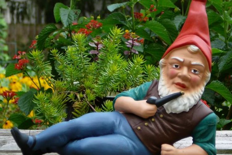 Garden Gnomes Were Regarded As Good Luck Charms By Our Ancestors