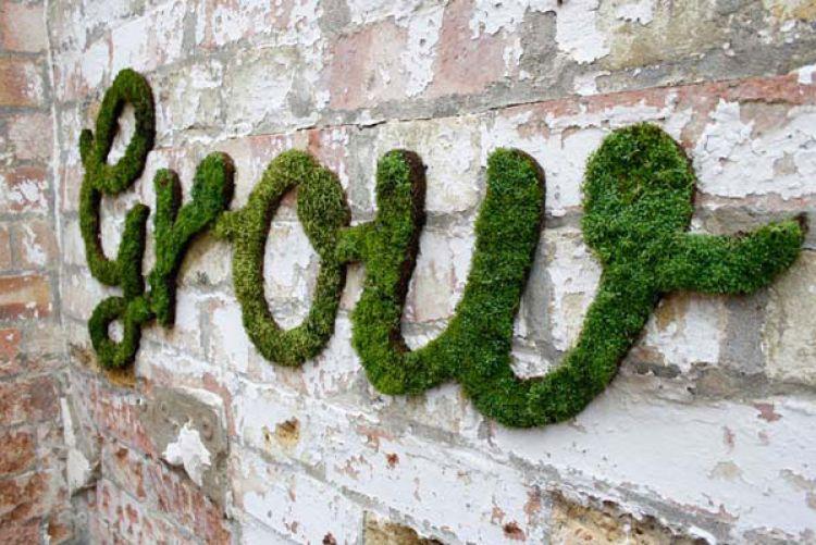 How to make moss wall art