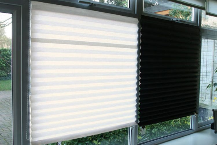 Blinds In A Box