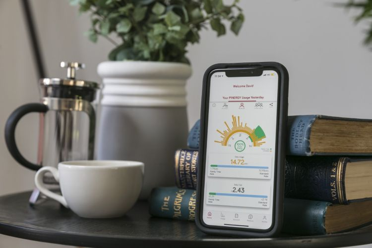 How We Live Now, our Partnership with Pinergy