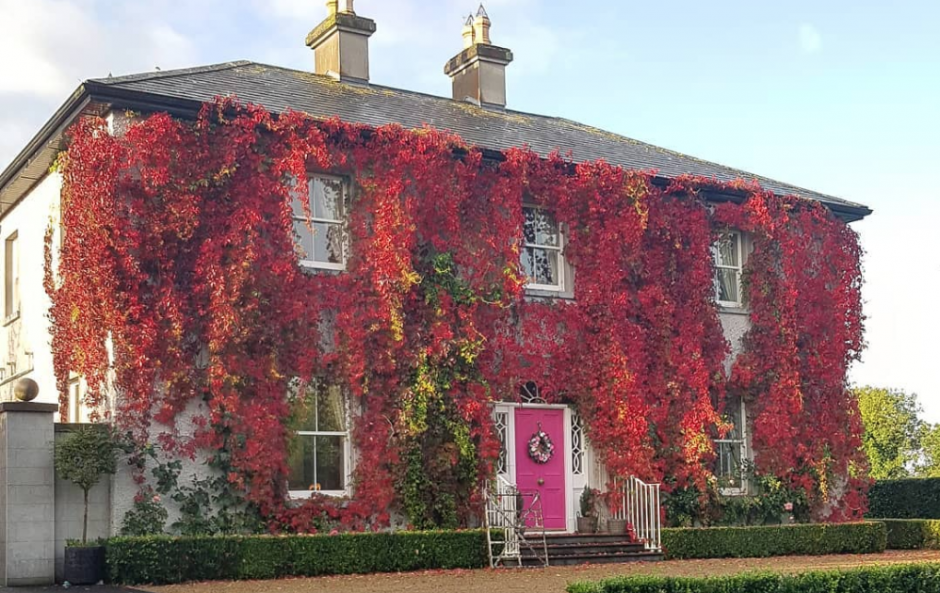 #InteriorInfluence19: 24 Irish Instagrammers with beautiful period homes