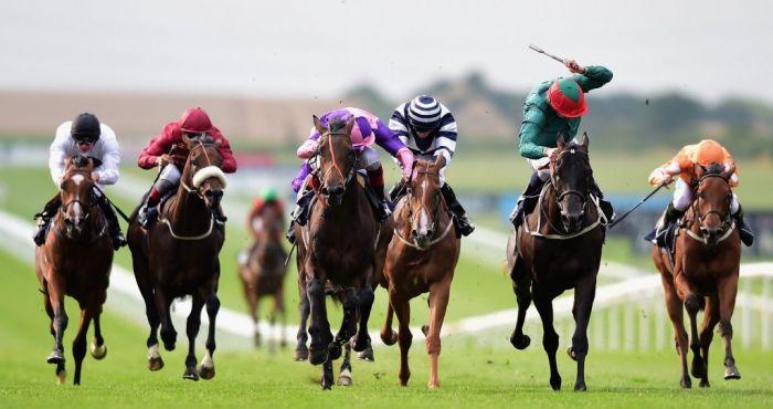Cesarewitch 2021 bettingadvice las vegas nfl betting lines