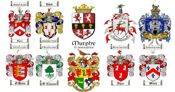 The Top 10 Most Common Irish Family Crests And What Their Mottos Mean The Irish Post