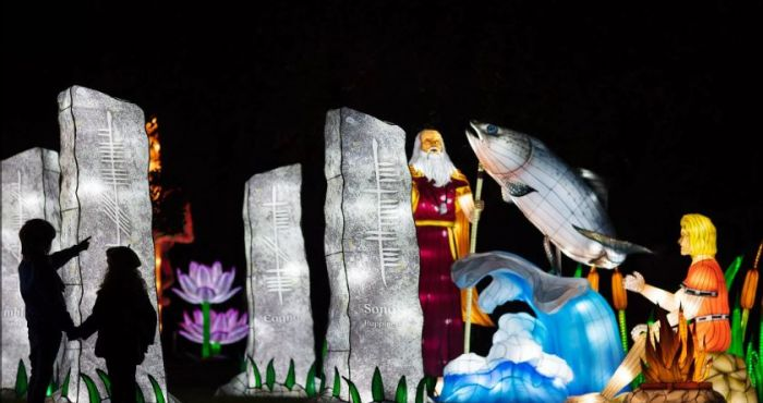 Wild Lights: Dublin Zoo stuns with incredible light show depicting irish myths and legends | The Irish Post