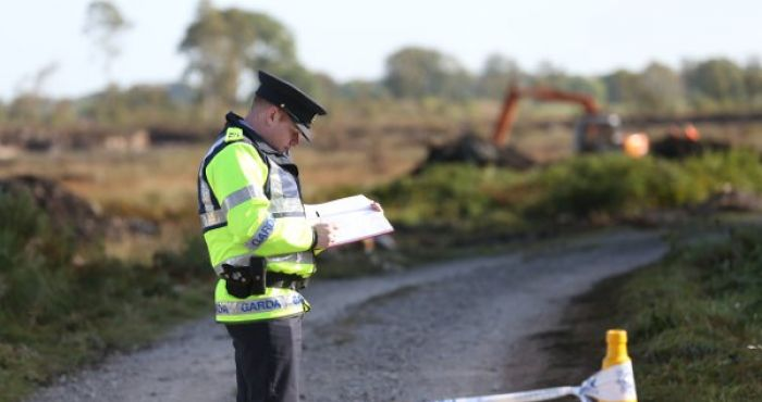 Schoolgirl dies after 'absolutely tragic' accident on farm in Co Armagh | The Irish Post