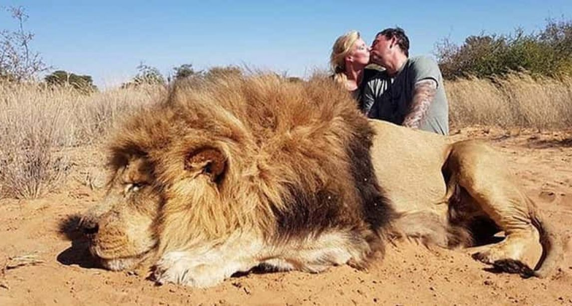 Couple who kissed in front of lion they killed are getting death threats on the internet