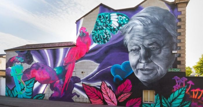 Petition launched to save David Attenborough mural in Dublin