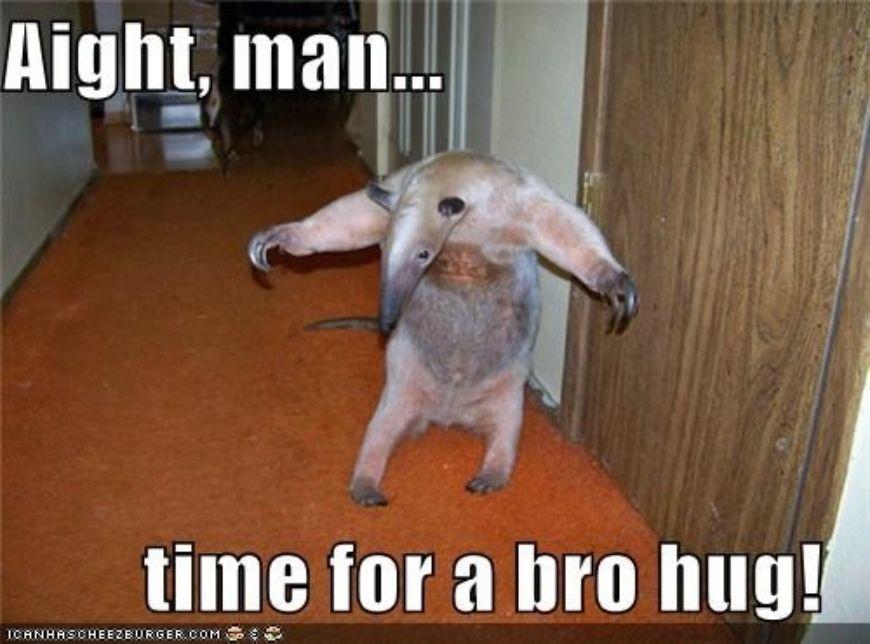 Locust-brother-hug-me- aa3a772e4083058cf788f21b55228fcb