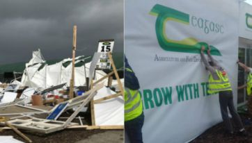 PICS: National Ploughing Championships Back On Again After Storm Ali Caused Serious Damage