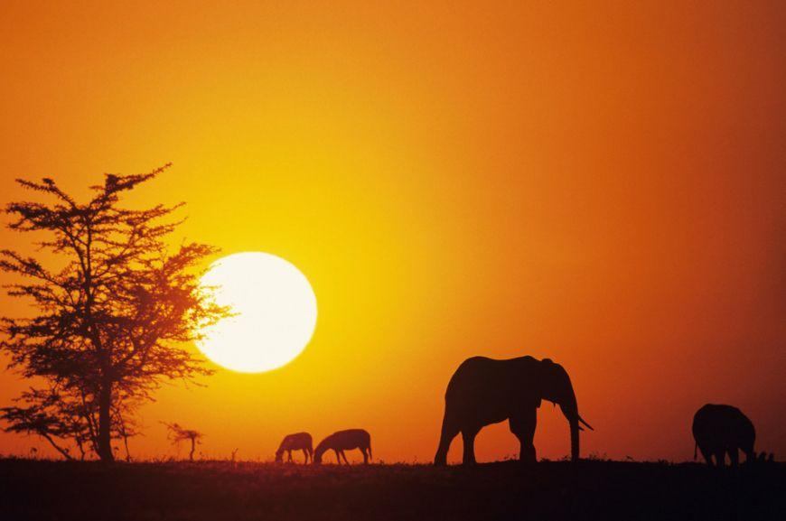 Kenya-Africa