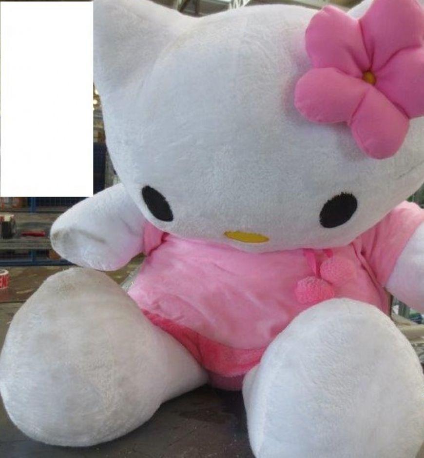 Teddy Pic 1