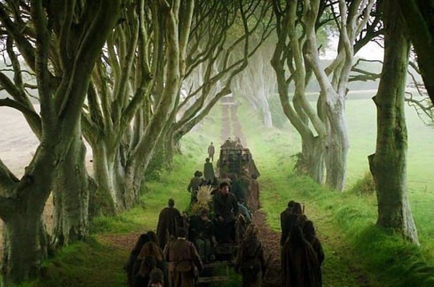 The-Dark-Hedges-Co.-Antrim2