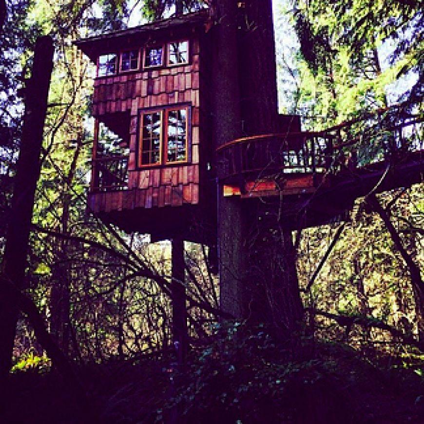 Treehouse-Point-in-Fall-City-Washington2