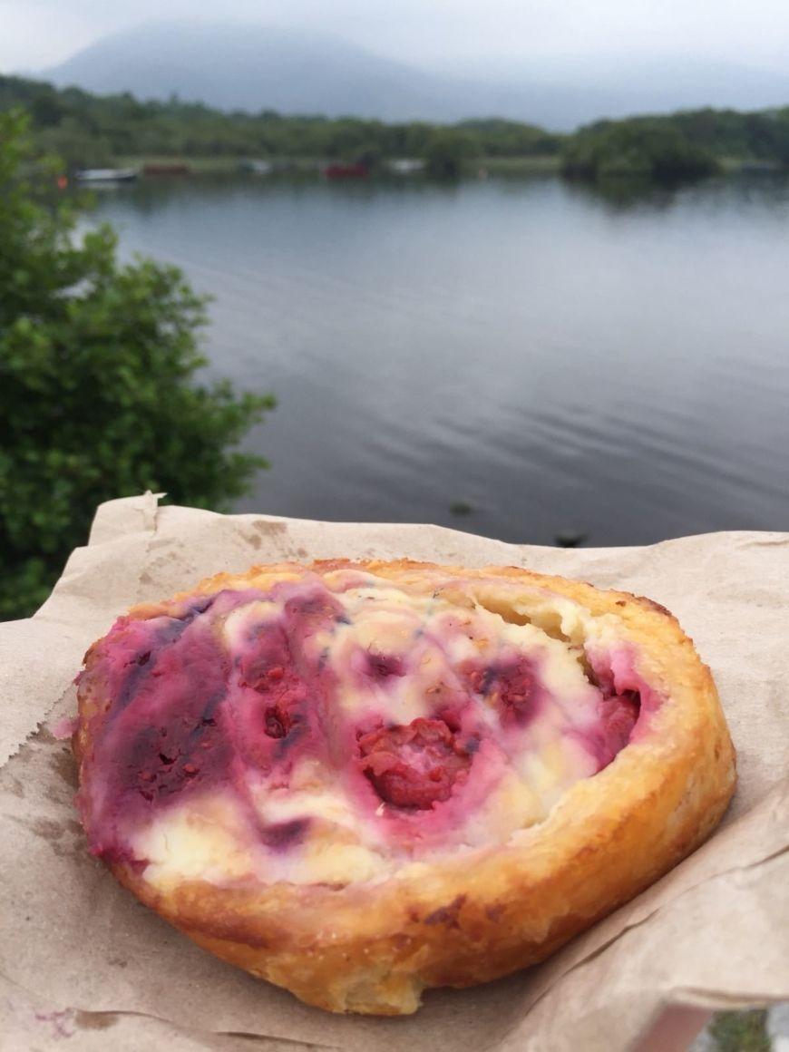 Petit Delice Raspberry Roulade