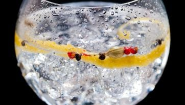 """This Irish Gin Has Landed First Place In The New York """"Gin Oscars"""""""