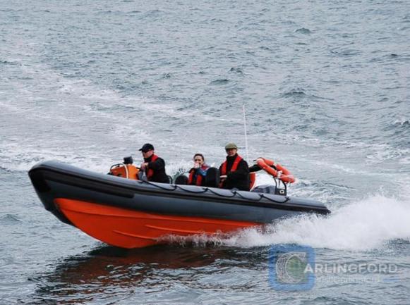 carlingford speedboat