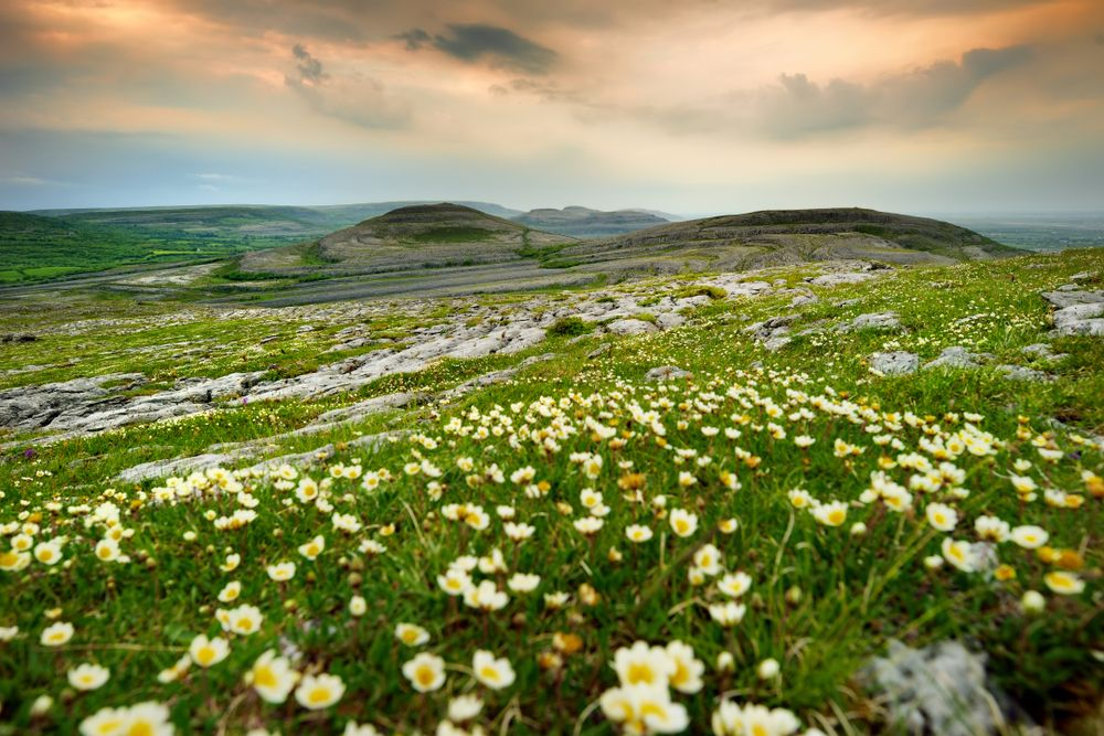 Make a break for County Clare: some wonderful adventures to have here