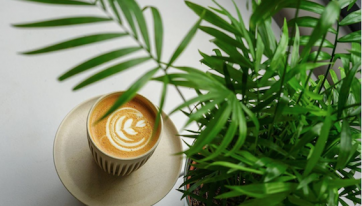 This Sustainable Coffee Shop Opened Up In Bray And It's Unreal