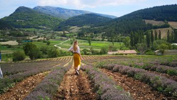 24 Hours In Provence - Discover The Breathtaking French Countryside