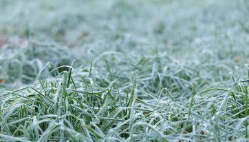 Temperatures Could Drop To -1C Over The Weekend Warns Met Eireann