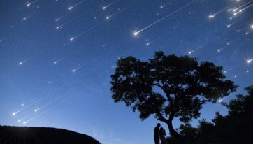 A Massive Meteor Shower Is Set To Peak Tonight