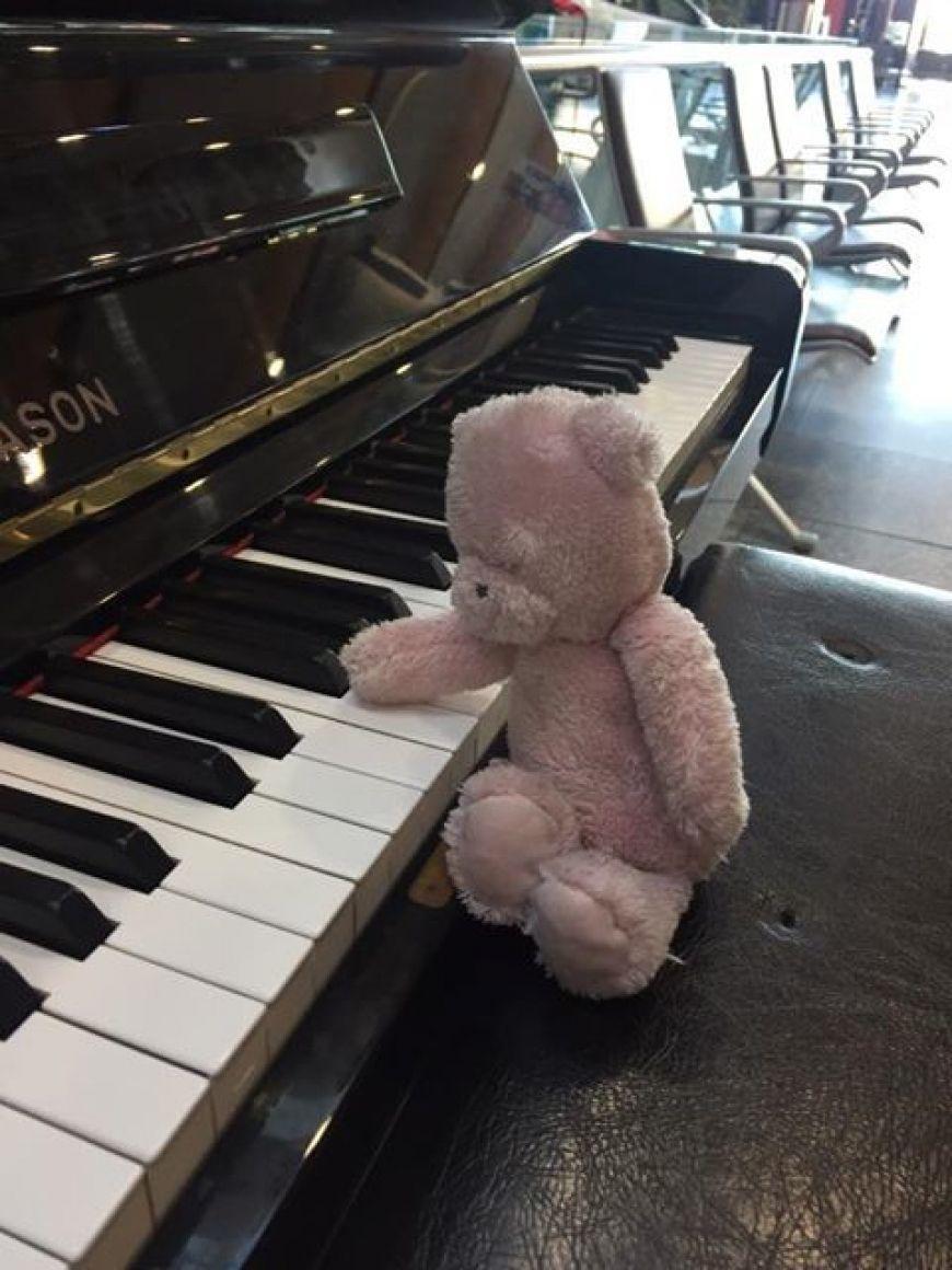 Teddy Piano