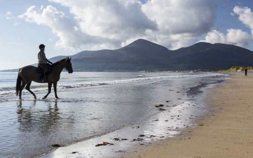 Medium Murlough Beach 0926