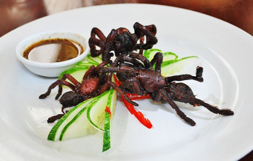 Fried-tarantuala