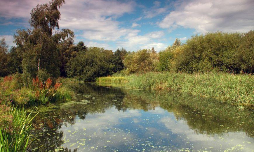 London-Wetland-Centre1