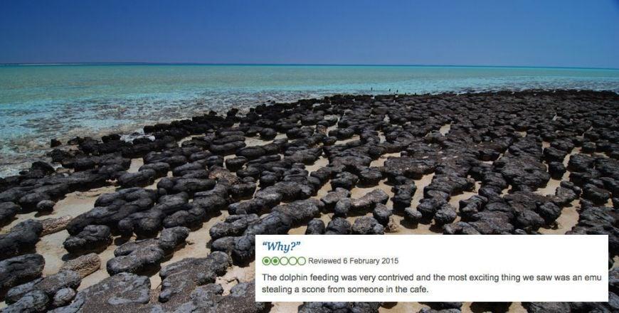Shark-Bay