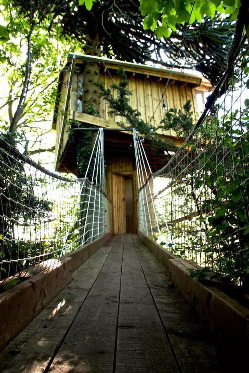 Treehouse Cork 2