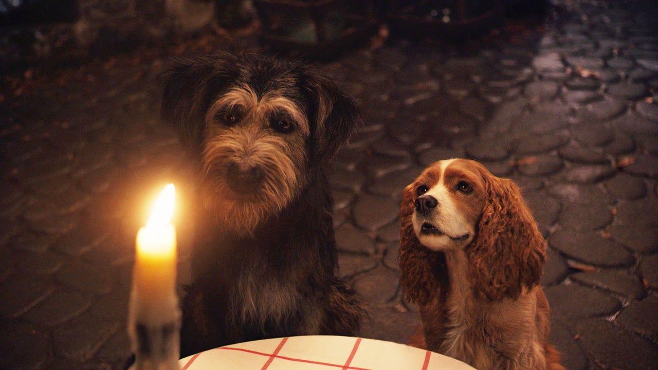 lady and the tramp Disney+ original movie